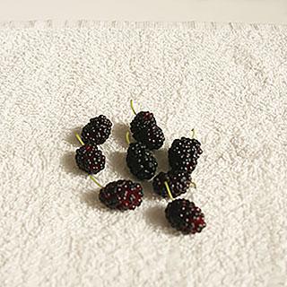 как отстирать пятно ягода шелковица пятновыводитель ваниш
